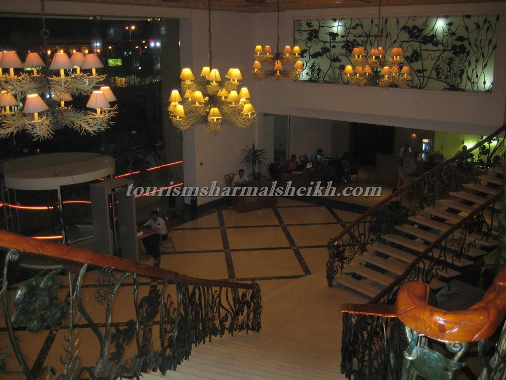 فندق تروبيتال شرم الشيخ2