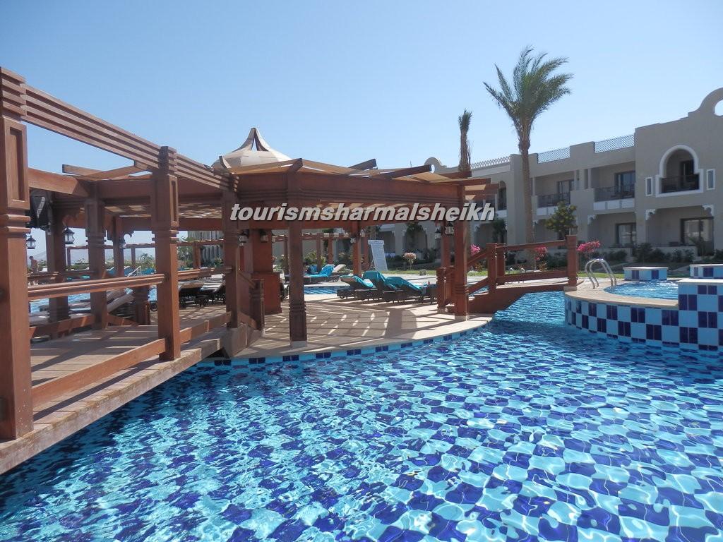 فندق صن رايز جاردن خليج القرش1