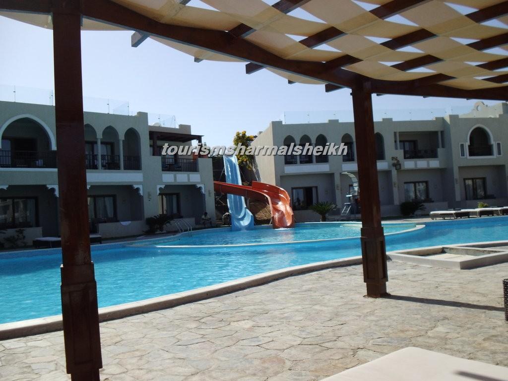 فندق صن رايز جاردن خليج القرش4