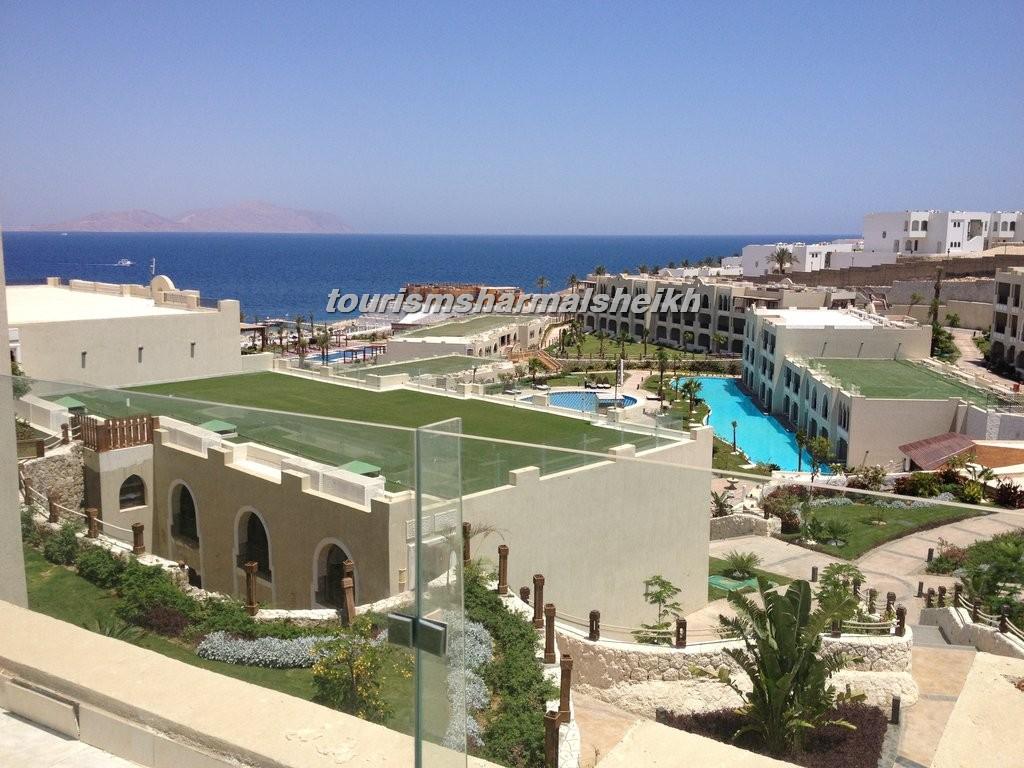 فندق صن رايز جاردن خليج القرش5
