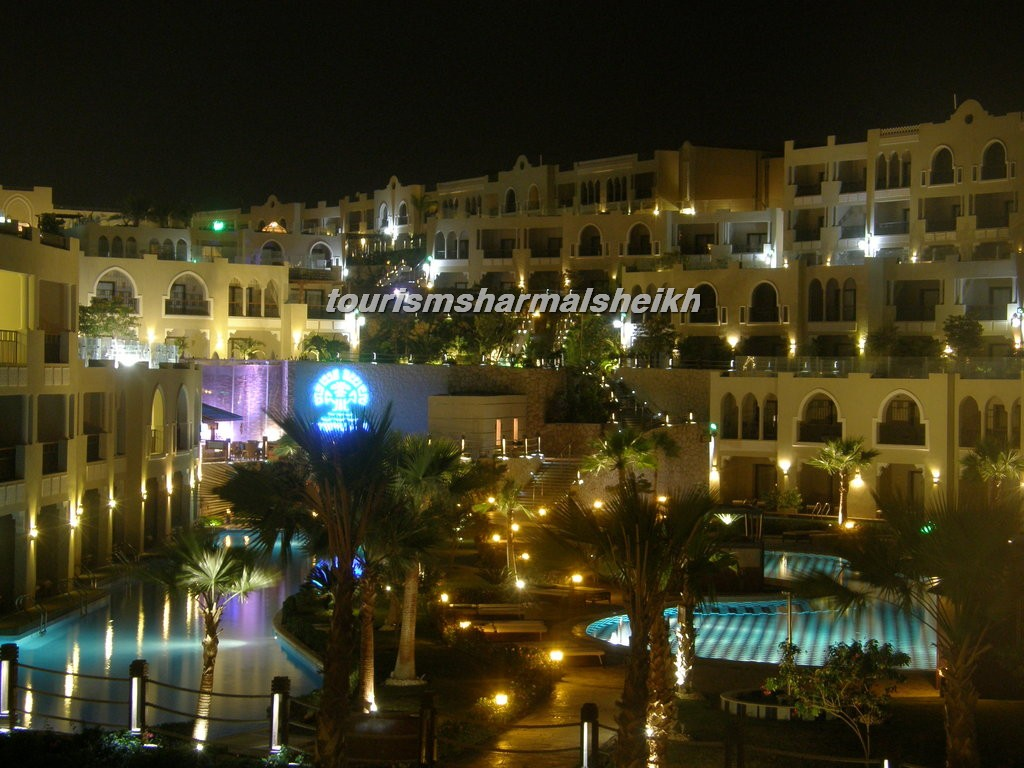 فندق صن رايز جاردن خليج القرش7