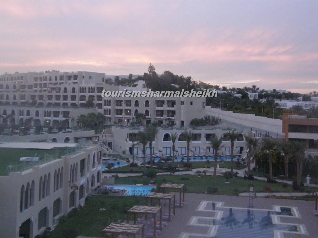 فندق صن رايز جاردن خليج القرش8