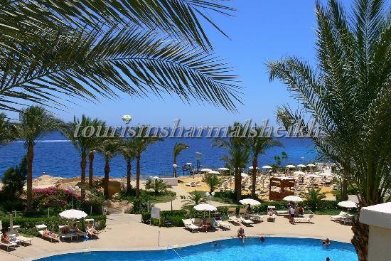 Stella Di Mare Beach Hotel فندق ستيلا دي ماري شرم الشيخ4