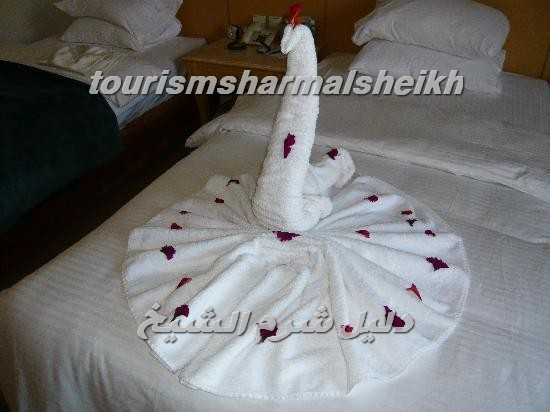 Concorde El Salam Hotel فندق كونكورد السلام شرم الشيخ5