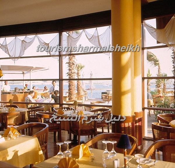 Iberotel Lido فندق ايبروتيل ليدو12