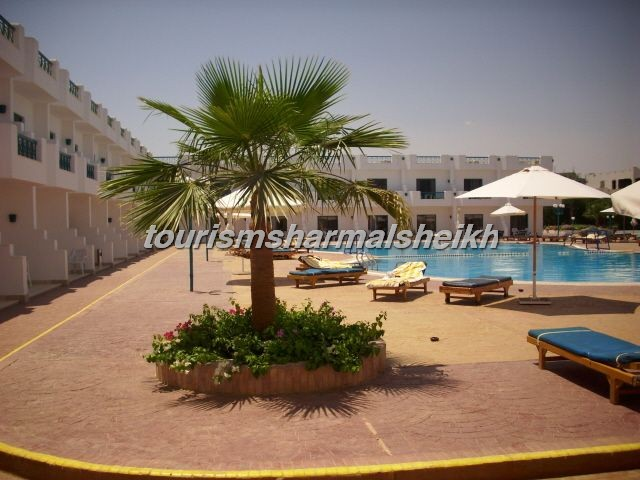 Sharm Cliff Resort منتجع شرم كليف1