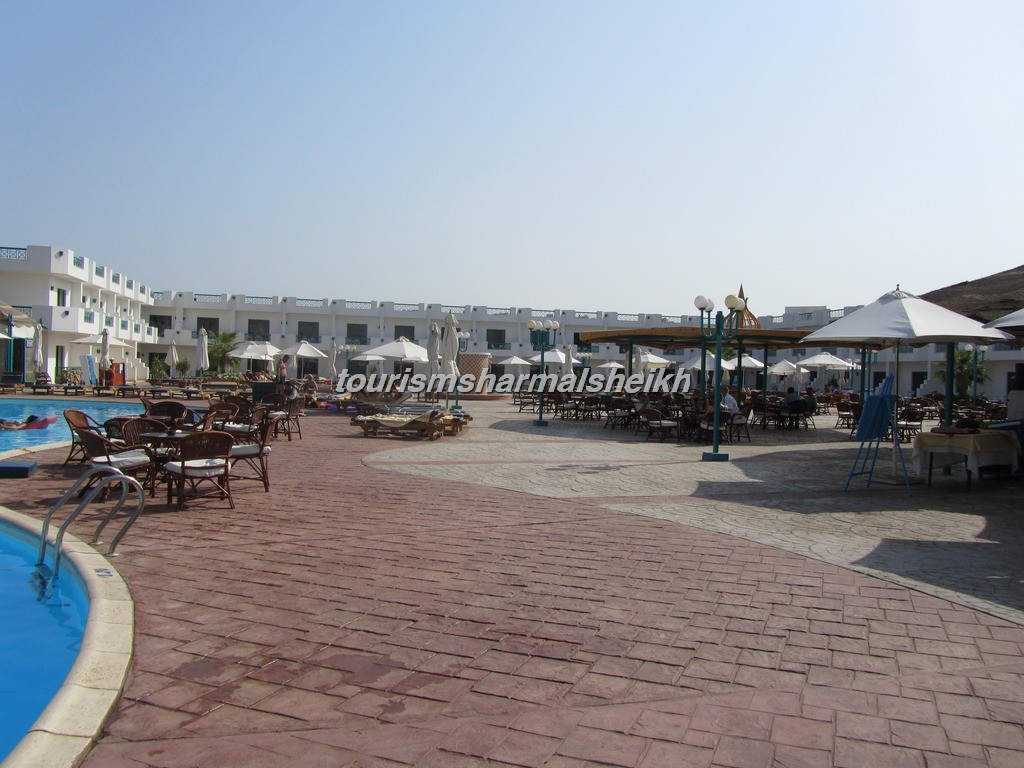 Sharm Cliff Resort منتجع شرم كليف4