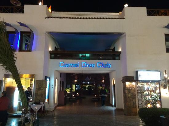 فندق كمل بوتيك شرم الشيخ Camel Dive Club & Hotel